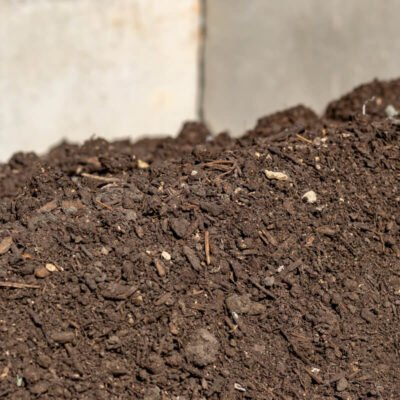 Mushroom Compost Pile Closeup