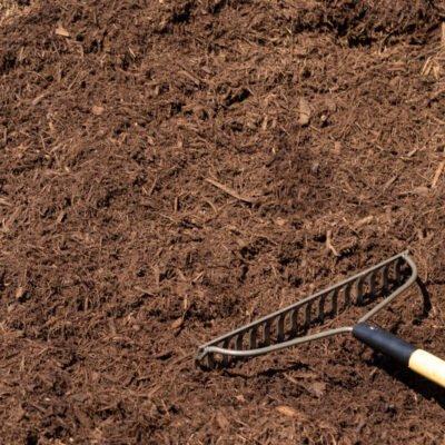 double shredded hardwood mulch with rake