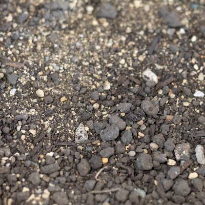 Planting Mix Closeup