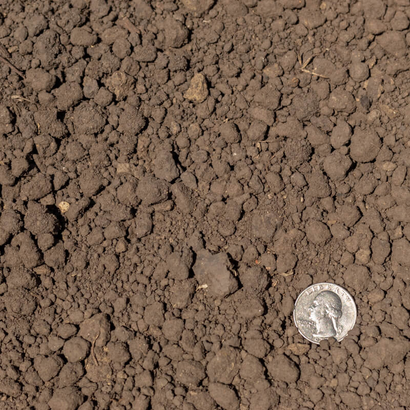 Pulverized Topsoil with Quarter